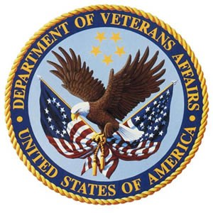 Department of Veterans Badge